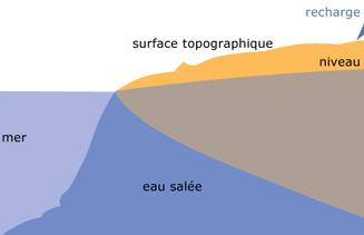 Intrusion d'eau salée dans les aquifères côtiers